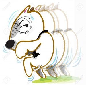 30556517-Dog-Bull-terrier-species-walk-stealthily-he-want-to-abscond-from-some-one-Because-distrust-event-Stock-Vector